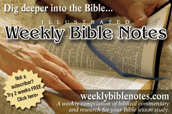 Weekly Bible Notes
